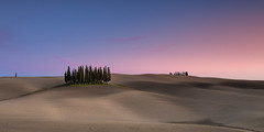 Best of Tuscany Photography Tour and Workshop (Fernando Piçarra) Tags: tuscany landscape nature outdoors no people beauty in rural scene sky day tranquil hill field cypress tree sunset scenics crete senesi italy workshop workshops tour tours valdórcia val dorcia lannscapes