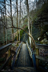 south mountain january 2020-83.jpg (McMannis Photographic) Tags: landscapeandnature river travel water northcarolina southmountainstatepark tokina1120f28 photography destination lens waterfall blueridge carolinas connellysprings creek explore fallingwater fluvial foothills mountain nc ncpark ncstatepark rapids southeast stream tourism whitewater scenics notjustlandscapes world trekker ngc