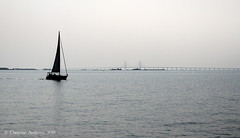 ... The Bridge ... (ChristianofDenmark) Tags: copenhagen denmark summer water øresund thebridge hot sailing tv series haze