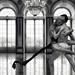 Ballerina Ballroom Dancers Human Edited 2020