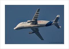 Jumbo - Beluga (prendergasttony) Tags: mobilityairbus aircraft blue sky airbus nikon d7200 lancashire outabout transport cheshire wings beluga whale radar radar24