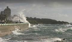 20200112Z7_8237FLR (cisco42) Tags: bc britishcolumbia canada waves wind victoria