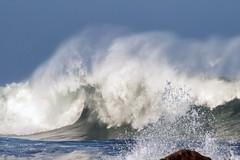 Crescendo (Kristen Fletcher Photography) Tags: pacificgrove montereybay oceanwaves crashingwaves pointpinos sea ocean coastal coast california