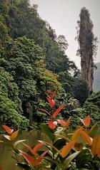 The Needle (SM Tham) Tags: asia southeastasia malaysia perak ipoh tambun thelostworldoftambun waterpark zoo limestone hills karst geologicalformations nature landscape plants greenery lake water