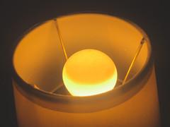 Lamp - 12/365/2020