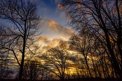 Sunrise_0373 (smack53) Tags: smack53 sunrise clouds cloudy cloudysky sky trees silhouettes goldenhour westmilford newjersey nikon z50 nikonz50