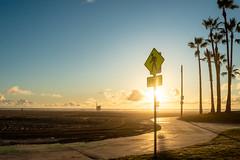 (蔡藍迪) Tags: 35mm ed 18g nikon nikkor d610 usa american ca california losangeles la venice venicebeach beach sunset sun 加州 洛杉磯 美國