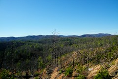 Sawtooth Trail (greer82496) Tags: south mountains state park north carolina sawtooth walker top fire tower burkemont
