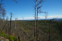 Chestnut Knob Overlook (greer82496) Tags: south mountains state park north carolina chestnut knob bakers