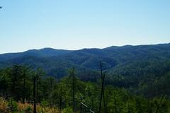 Sawtooth Trail (greer82496) Tags: south mountains state park north carolina sawtooth benn knob
