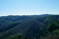 Chestnut Knob Overlook (greer82496) Tags: park mountains state south north carolina chestnut knob benn