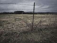 Other Side of the Fence (Chatterstone Photography) Tags: barbedwire clouds fence landscape cumming georgia unitedstatesofamerica