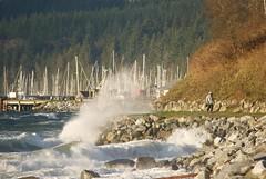 Crashing waves (jackfate641) Tags: powellriver britishcolumbia canada wind waves seawalk