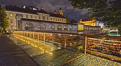 Ljublijana Love Locks DSC_6913 (JKIESECKER) Tags: ljubljana slovenia cityscenes citynighttime cityskyline cityscapes citystreets nighttime nighttimelights love lovelocks bridge water rivers