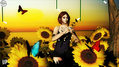 Sunflower Dreams ~ WitchCraft and Peppers Poses @ UP Event! (KoreRae Starfall (Art & Soul Photography)) Tags: upevent up slevents secondlife sl slfashion slposes backdrop peppersposes witchcraft sunflowers butterflies thisiswrong mooloo nd naileddown infinity suxue zuri blaxium plastik alaskametro swallow sinfulneeds maitreya belleza slink ebody glamaffair catwa artsoul