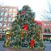 Lobster Trap Christmas Tree PORTLAND Regency Hotel & Spa