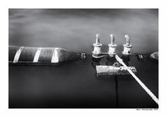 """""""Dans Les Traces Du Poulpe Ou Pour L'Attendrir Faut Taper Dessus... 37"""" (TBWLC Photography) Tags: fdrouet tbwlc nb bw monochrome port saintnazaire penhoët nikon d750"""