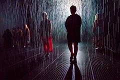 The Walking Wet (Pat Charles) Tags: rainroom rainroomaus wet rain water dark room silhouette silhouettes stkilda saintkilda melbourne victoria australia jackalope pavilion art gallery museum installation drops raining zombie walkingdead shaun shaunofthedead zombieland worldwarz nikon contrejour light grate street