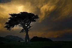 Stormy sunset (dave.fergy) Tags: green