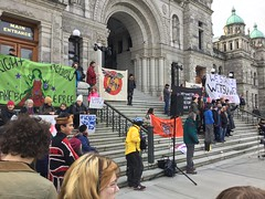 Support the Wet'suwet'en refusal of the CGL pipeline (Stop carbon pollution) Tags: canada britishcolumbia bc vancouverisland victoria legislature
