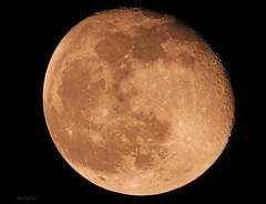 The Moon ~ Nikon Coolpix P1000 (KissThePixel) Tags: moon nikon nikoncoolpixp1000 p1000 coolpixp1000 coolpix 243000mm