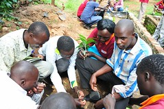 _Trainees practicing how to graft seedlings