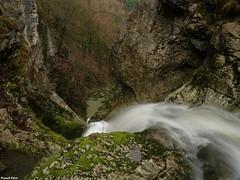 au dessus la cascade du pont du diable - Crouzet Migette (francky25) Tags: au dessus la cascade du pont diable crouzet migette franchecomté doubs