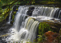 Nature in full flow (Ade Ward Phototherapy.) Tags: green leaves trees woodland woods breconbeacons river stream beauty tranquility scenery nikon landscape wales wildlife nature waterfalls nationalpark brecon southwales sgwdisafclungwyn