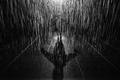 Scarecrow (Pat Charles) Tags: rainroom rainroomaus wet rain water dark room silhouette silhouettes stkilda saintkilda melbourne victoria australia jackalope pavilion art gallery museum installation drops raining zombie walkingdead shaun shaunofthedead zombieland worldwarz nikon contrejour light grate street