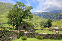 Abandoned 2 (vincocamm) Tags: hartsop cumbria abandoned barn drystone drystonewall summer mountains trees landscape wideview green wall farming agricultral lakedistrict nationalpark nikon d5500 june agriculture
