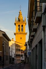LA TORRE DORADA (2) (bacasr) Tags: ancient basílica torre comunidaddemadrid campanario pueblos dorado villages church tower golden antiguo belltower madrid iglesia spain españa colmenarviejo
