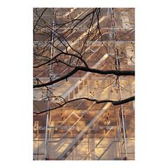(Dennis Schnieber) Tags: fujica st801 fujinon 50mm f14 kodak gold colour analogue film 35mm berlin lichtenberg