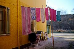 Les couleurs vivants - Comacchio la vie calme (Paolo Pizzimenti) Tags: comacchio vie calme reflet couleurs vivant fujifilm xpro3 xr35mm f14 fujinon italie paolo canal pont film pellicule argentique