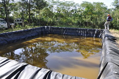 A fish pond on Moses Sna's farm in homa Bay County, Kenya