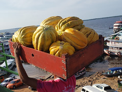 (Dubes) Tags: streetphotography fotografia de rua amazon amazônia manaus porto melões fruta transporte brasil brazil people boats pessoas