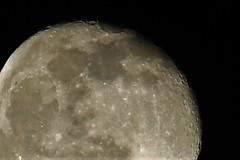 Waning Gibbous, 94.3% illuminated (Epiphany Appleseed) Tags: waning waninggibbous gibbous gibbousmoon gibbousmoonlondon waningmoon january 2020 moon moonintheuk uk england astro astronomy astrophotography astrophysics