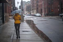 EA105339 (sswee38823) Tags: aposummicron50mmf2 aposummicron aposummicron50 aposummicronm1250asph apo leicaapo502 leicaaposummicronm50mmf2asphfle leicaaposummicronm50mmf2asph leicaaposummicronm50mmasph summicron50mmapo summicron50mm summicron 50mm 50 50aposummicron leica50apo umbrella street people woman rain rainy boston bostonma city cityscape ma massachusetts newengland leica leicacamera leicacamerausa m10 m10leica leicam10 leicacameraagleicam10 rangefinder photography photograph photo seansweeney seansweeneyphotographer