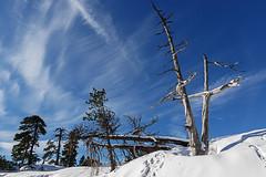 20200112 BELAGUA (MAVARAS) Tags: mavaras nieve azul blanco invierno