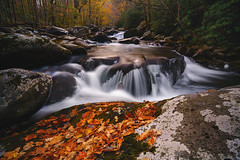 That Rock In Fall (Travis Rhoads) Tags: 2020 sonyilce7rm2a7rii zeissbatis18mmf28 reallyrightstuff ba72l bh55 rrspcl1 tvc33 formatthitechfirecrest2stopnd leecircularpolarizer leefoundationkit fallcolor flowingwater focusstacking landscapephotography longexposure mountains nationalpark nikcollectionbydxo rivers textures copyright2020 travisrhoadsphotography water cascades tennessee greatsmokymountainnationalpark tremont middlepronglittleriver