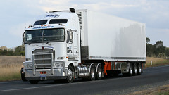 Plain White, Plain Nice (1 of 2) (Jungle Jack Movements (ferroequinologist) all righ) Tags: melbourne sydney hume highway olympic way yambla ken kenny kenworth hp horsepower big rig haul freight cabover trucker drive transport carry delivery bulk lorry hgv wagon road nose semi trailer deliver cargo interstate articulated vehicle load freighter ship move motor engine power teamster truck tractor prime mover diesel injected driver cab cabin loud wheel exhaust double b kw ettamogah k200 hatton maddens harden meat