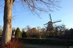 LANDSCAPE MILL (JaapCom) Tags: jaapcom zalk mill moulin milos molen valk historical farmhouse dutchnetherlands trees boom sky overijssel landscape holland pays bas