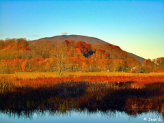 ... (Jean S..) Tags: fall grass colors autumn trees park water river