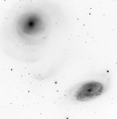 Shells and Galaxies, variant