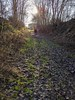 Path down to the River Tweed at Wark, Jan 2020