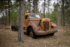 Lost in the woods (annedphotography1) Tags: old truck rusty broken forest trees leaves abandoned canada nikon