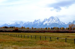 1029ex  missing the mountains...... (jjjj56cp) Tags: snowy snowymountains grandtetons grandtetonsnationalpark nationalpark wy wyoming autumn fall october landscape mountainscape fence seasons snow d7000 nikond7000 jennypansing mountains mountainrange snowcapped