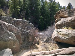 On the trail (wjaachau) Tags: pathways forest franktown hikingtrail hiking scenery scenic park boulder rockformations nature landscape colorado castlewoodcanyonstatepark