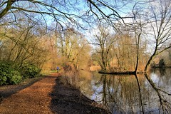 Monday in the Park (Clare-White) Tags: nikon3100 raw vondelpark amsterdam trees path watr reflection man leaves branches
