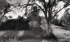 transgressions.... (BillsExplorations) Tags: ghosttown abandoned forgotten closed shuttered blackandwhite monchromemonday monochrome hmm transgressions nebraska old tree
