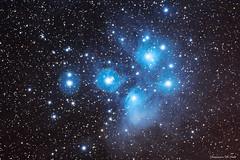 Pleiades (M45) (Domenico Di Cola) Tags: pleiadi pleiades seven sisters sette sorelle deepsky night nebulose nebula